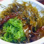 日本人だけが持っている腸内細菌!