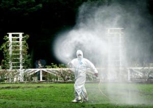 デング熱が発生し、代々木公園